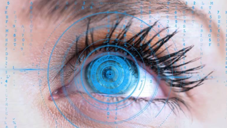 Особливості та механізми зору